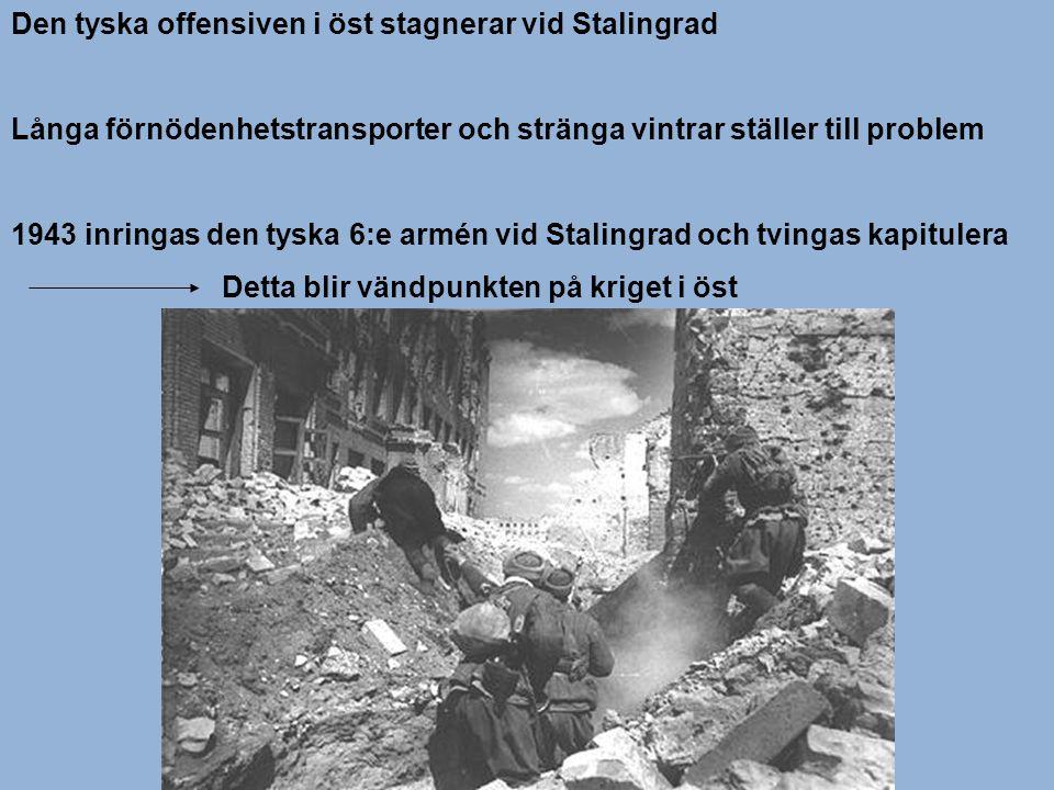 Den tyska offensiven i öst stagnerar vid Stalingrad