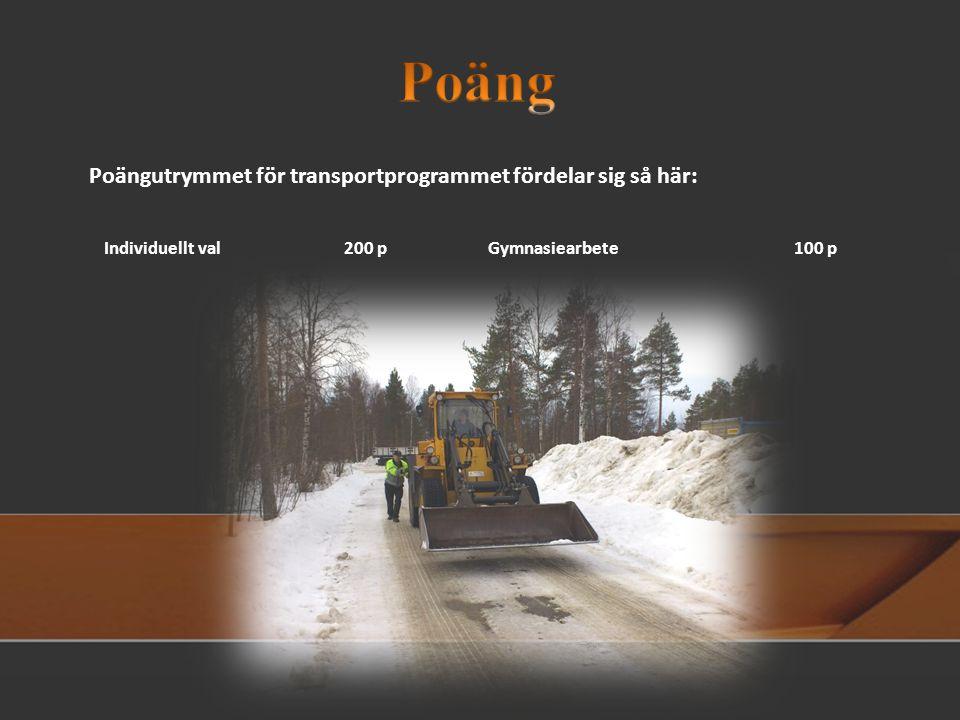 Poäng Poängutrymmet för transportprogrammet fördelar sig så här: