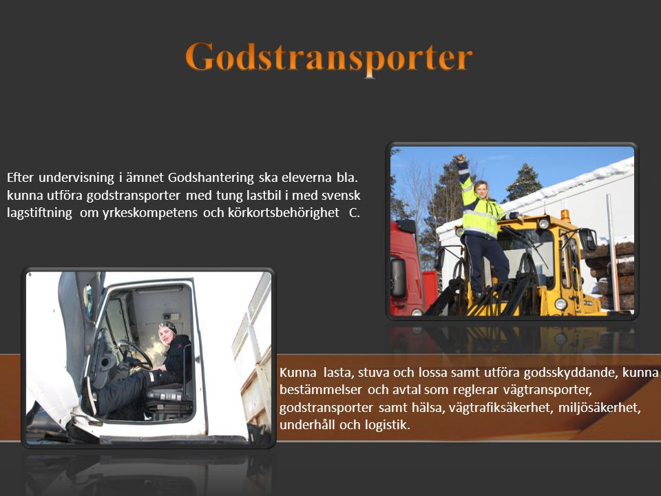 Godstransporter