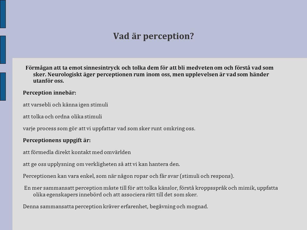Vad är perception