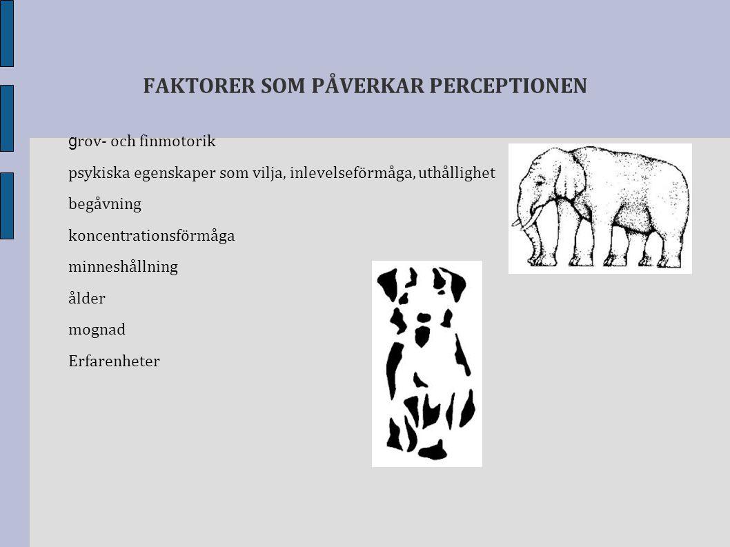 FAKTORER SOM PÅVERKAR PERCEPTIONEN