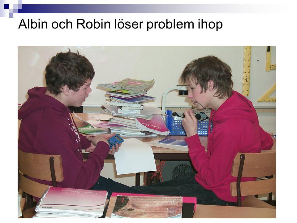 Albin och Robin löser problem ihop