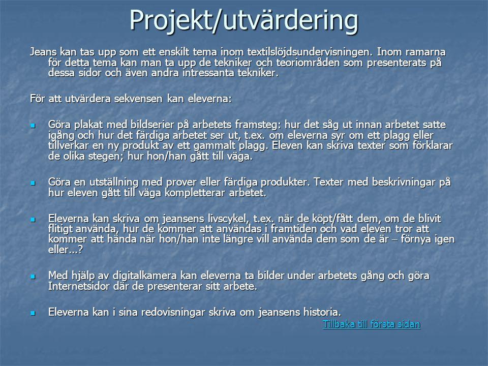 Projekt/utvärdering