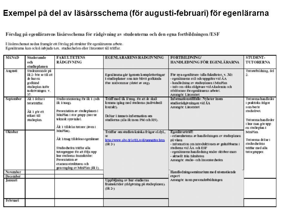 Exempel på del av läsårsschema (för augusti-februari) för egenlärarna