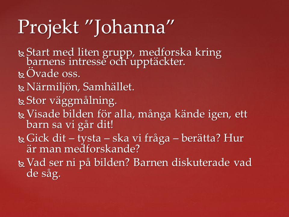 Projekt Johanna Start med liten grupp, medforska kring barnens intresse och upptäckter. Övade oss.