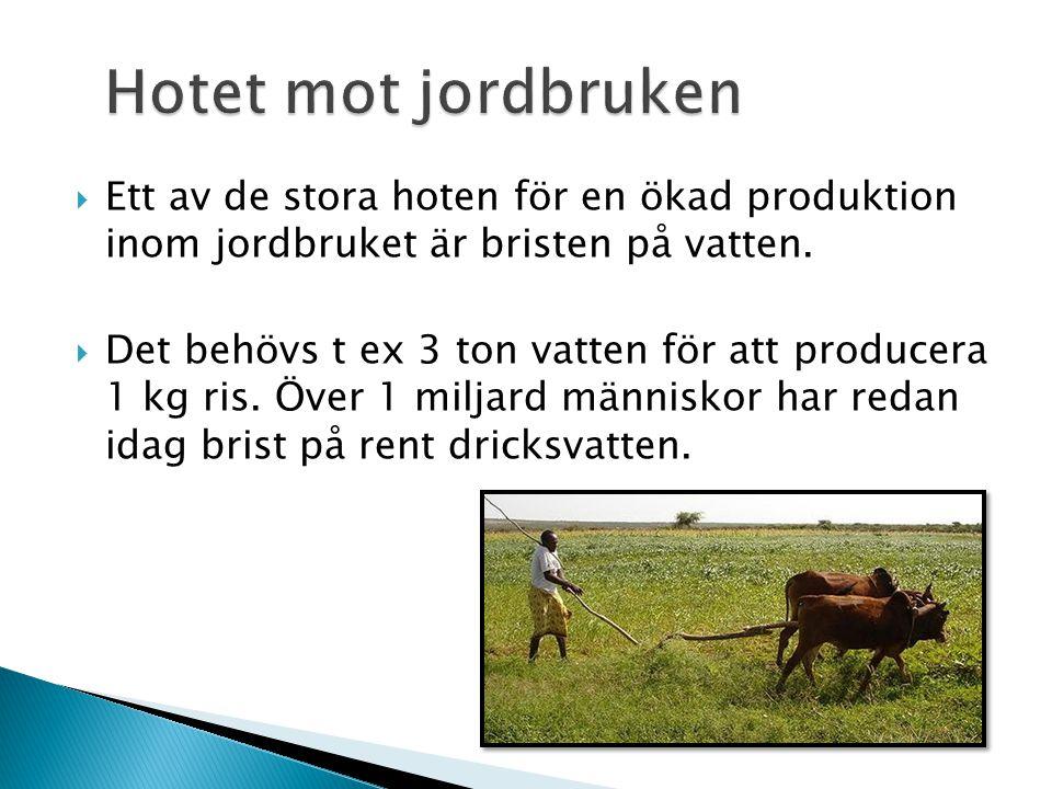 Hotet mot jordbruken Ett av de stora hoten för en ökad produktion inom jordbruket är bristen på vatten.