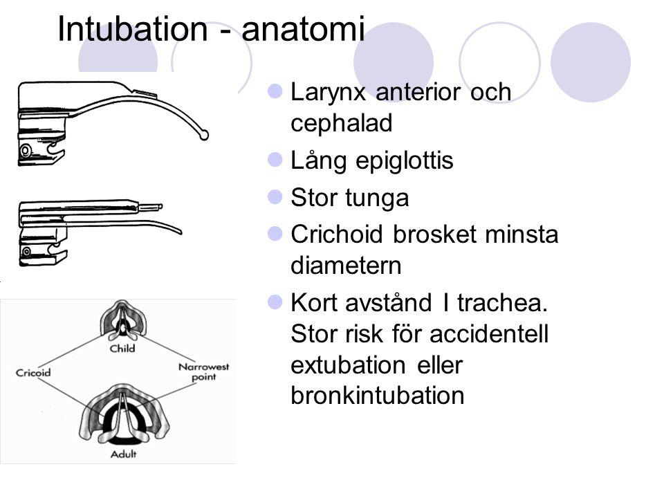 Intubation - anatomi Larynx anterior och cephalad Lång epiglottis