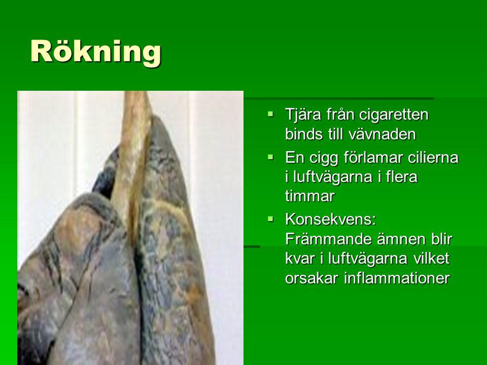 Rökning Tjära från cigaretten binds till vävnaden
