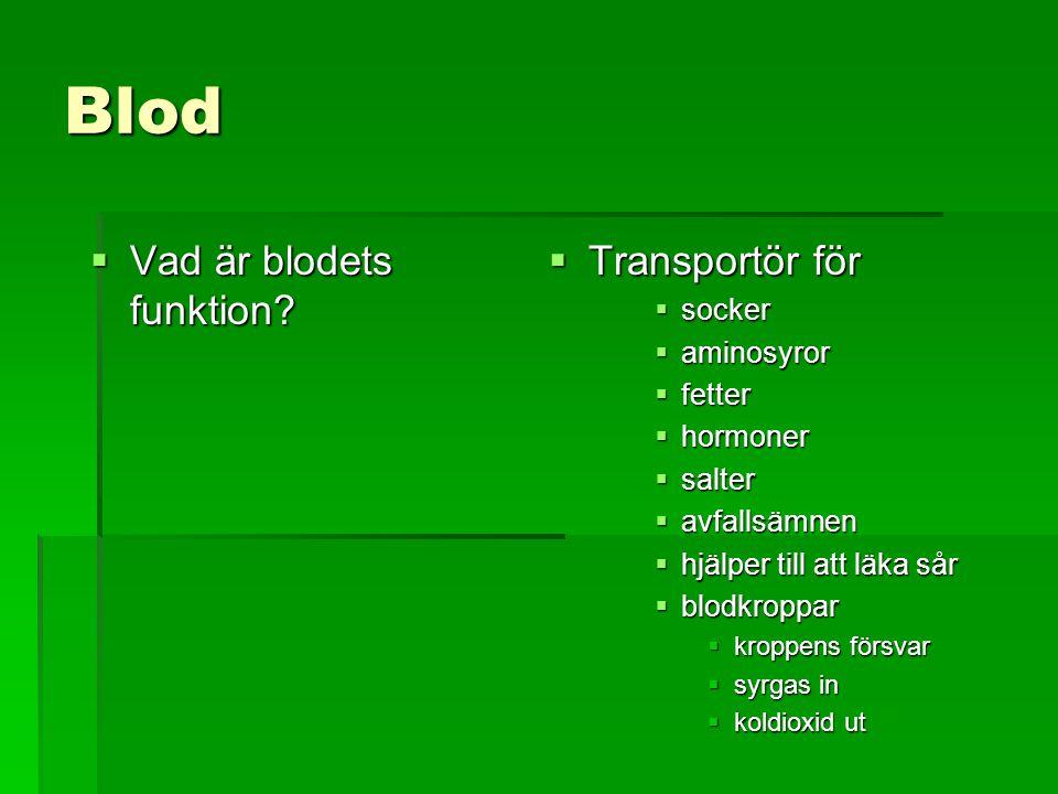 Blod Vad är blodets funktion Transportör för socker aminosyror fetter