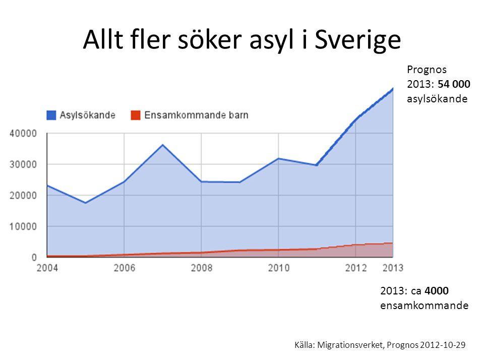 Allt fler söker asyl i Sverige