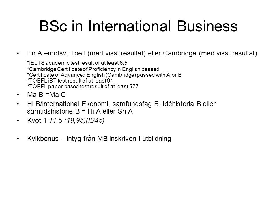 BSc in International Business