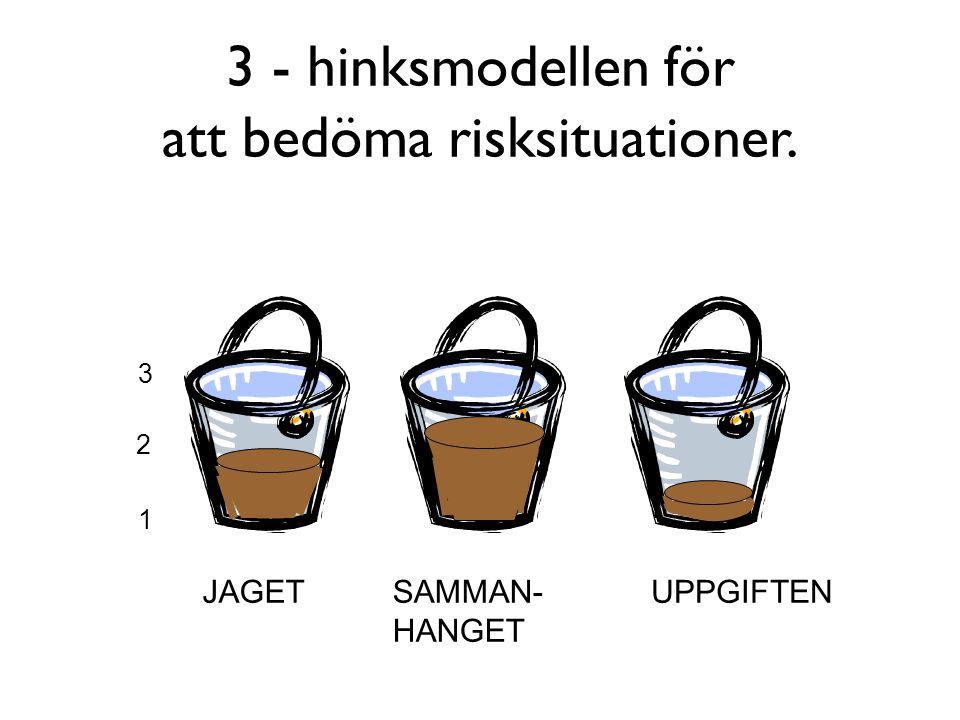 3 - hinksmodellen för att bedöma risksituationer.