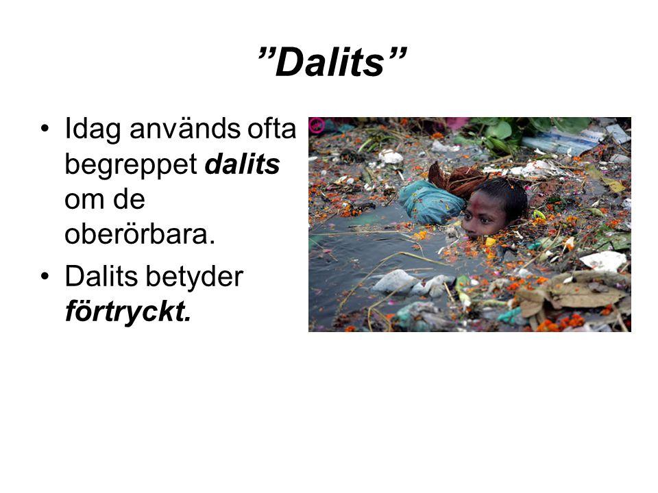 Dalits Idag används ofta begreppet dalits om de oberörbara.