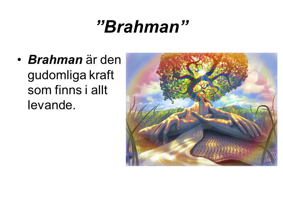 Brahman Brahman är den gudomliga kraft som finns i allt levande.