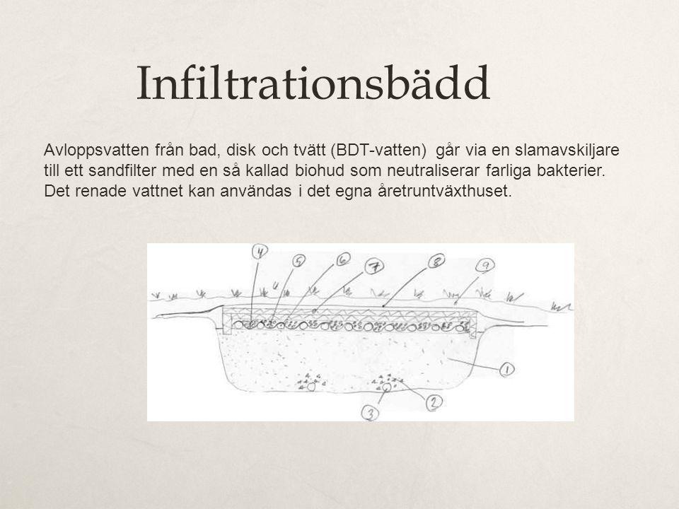 Infiltrationsbädd