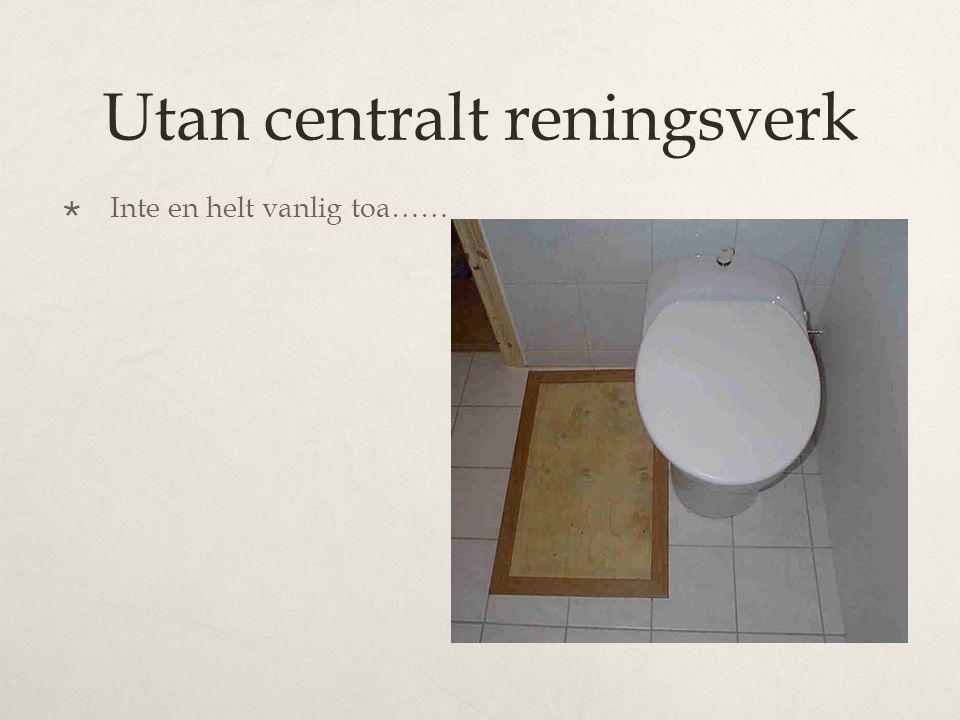 Utan centralt reningsverk