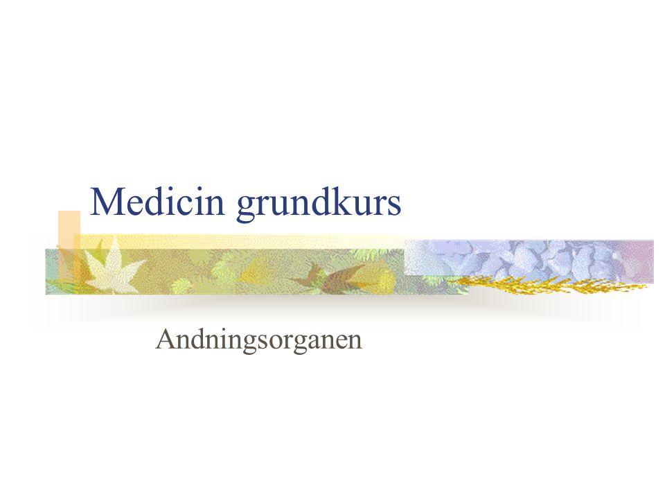 Medicin grundkurs Andningsorganen