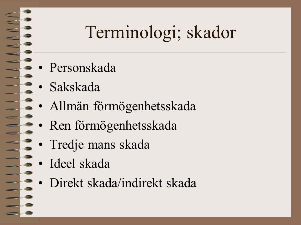Terminologi; skador Personskada Sakskada Allmän förmögenhetsskada
