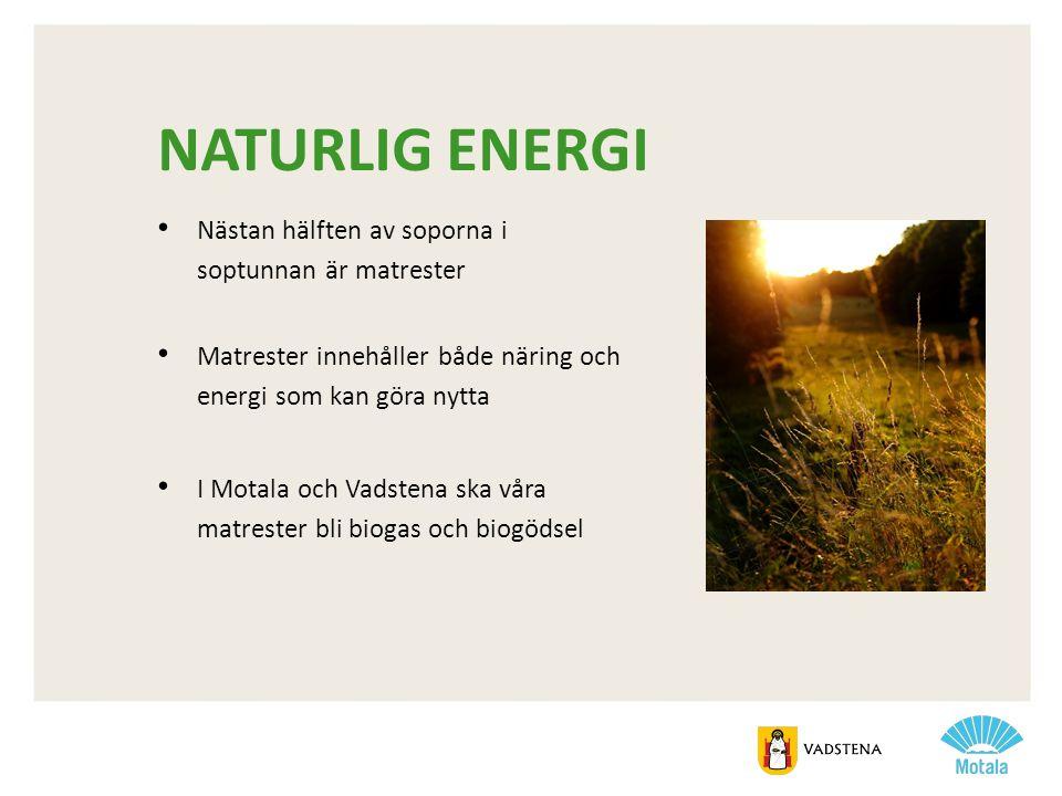 Naturlig energi Nästan hälften av soporna i soptunnan är matrester