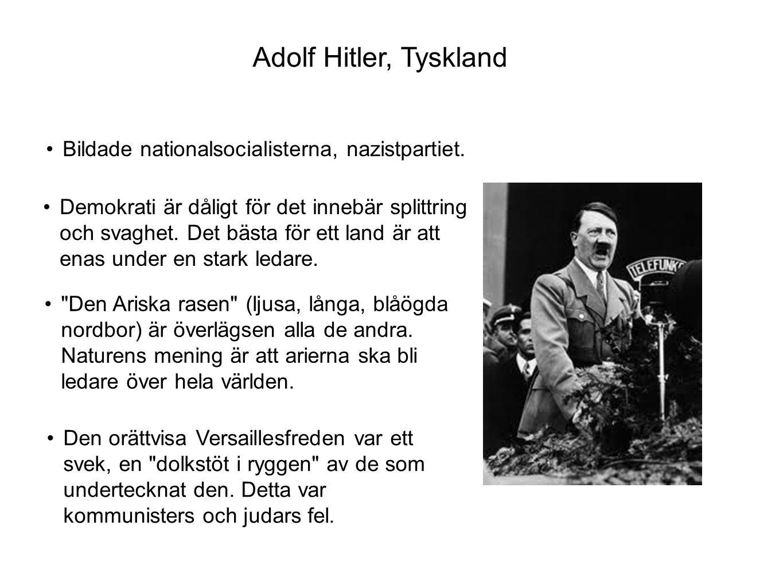 Adolf Hitler, Tyskland Bildade nationalsocialisterna, nazistpartiet.