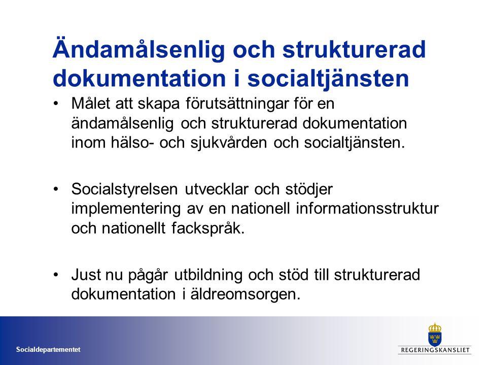Ändamålsenlig och strukturerad dokumentation i socialtjänsten