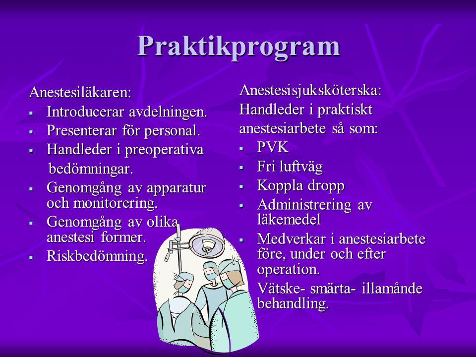 Praktikprogram Anestesisjuksköterska: Anestesiläkaren: