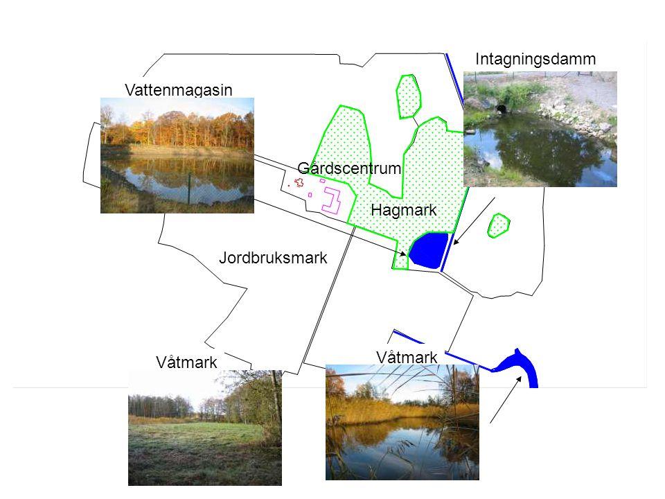 Intagningsdamm Vattenmagasin Gårdscentrum Hagmark Jordbruksmark