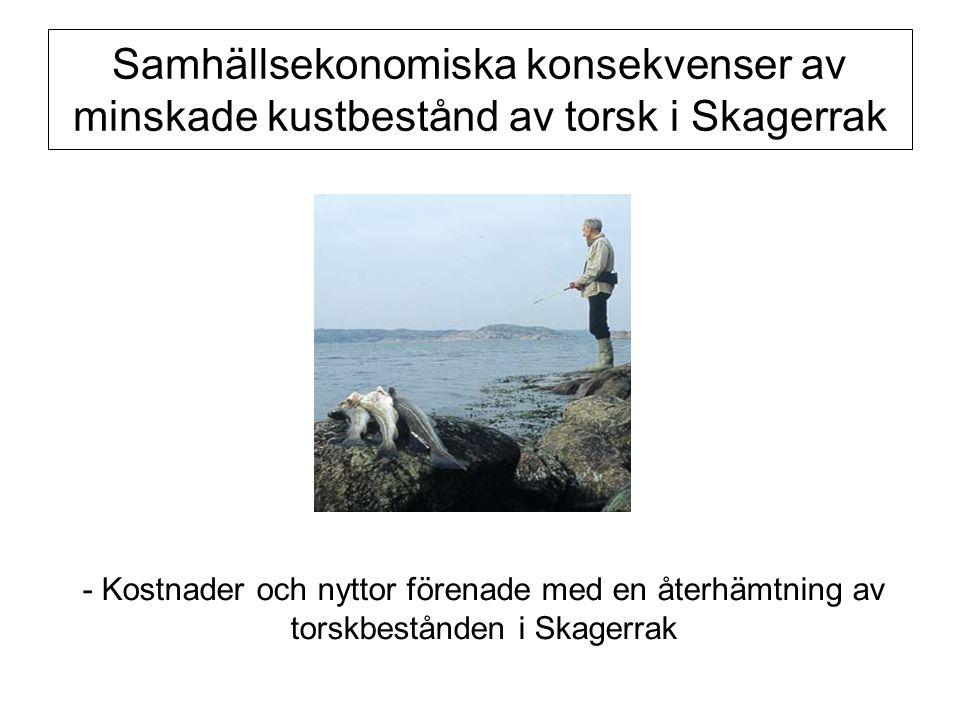 Samhällsekonomiska konsekvenser av minskade kustbestånd av torsk i Skagerrak