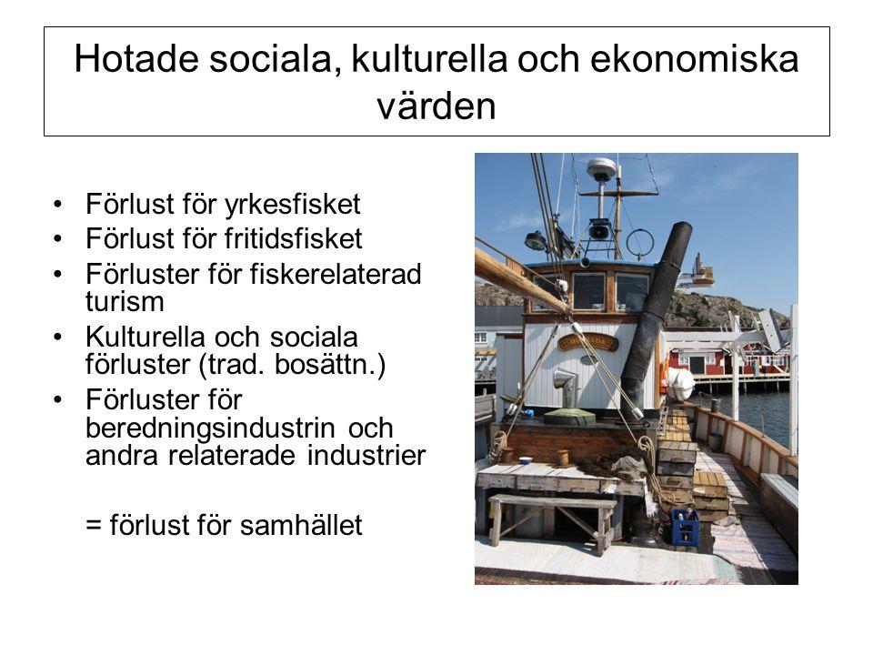 Hotade sociala, kulturella och ekonomiska värden