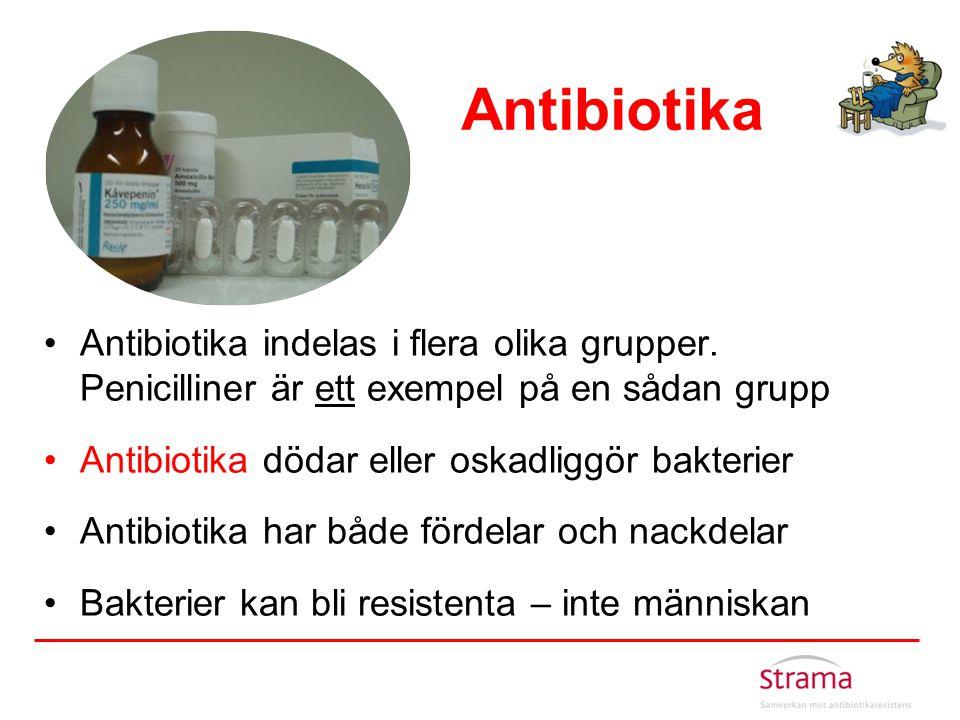 Antibiotika Antibiotika indelas i flera olika grupper. Penicilliner är ett exempel på en sådan grupp.