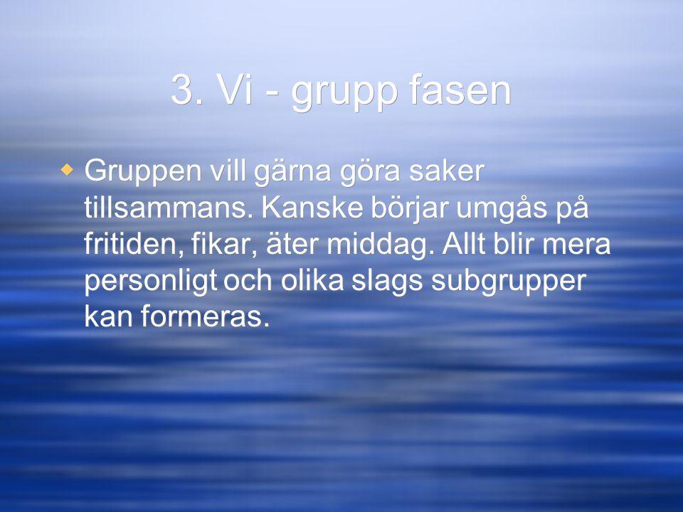 3. Vi - grupp fasen