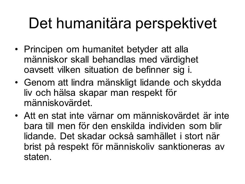Det humanitära perspektivet