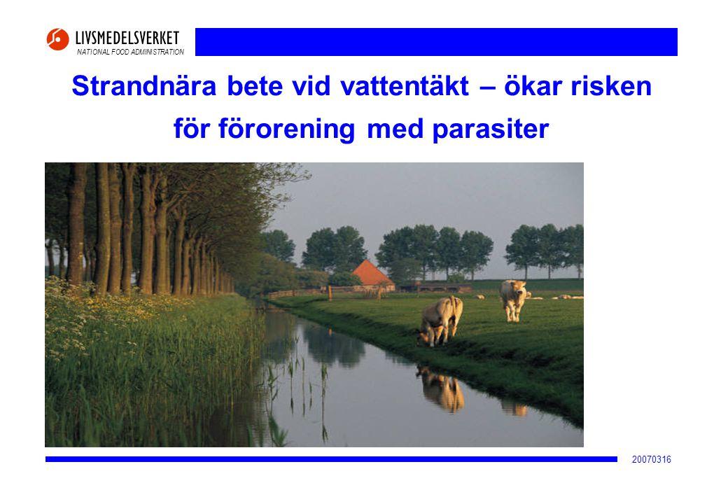 2017-04-02 Strandnära bete vid vattentäkt – ökar risken för förorening med parasiter 20070316