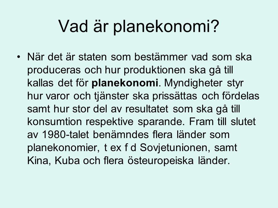 Vad är planekonomi