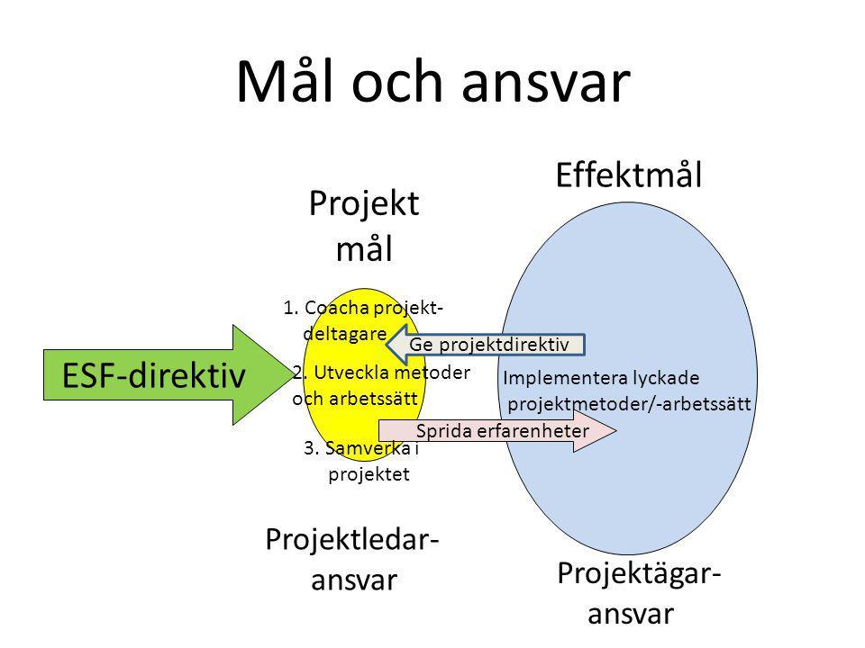 Mål och ansvar Effektmål Projekt mål ESF-direktiv Projektledar- ansvar