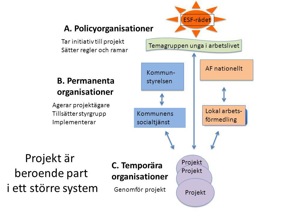 Projekt är beroende part i ett större system A. Policyorganisationer