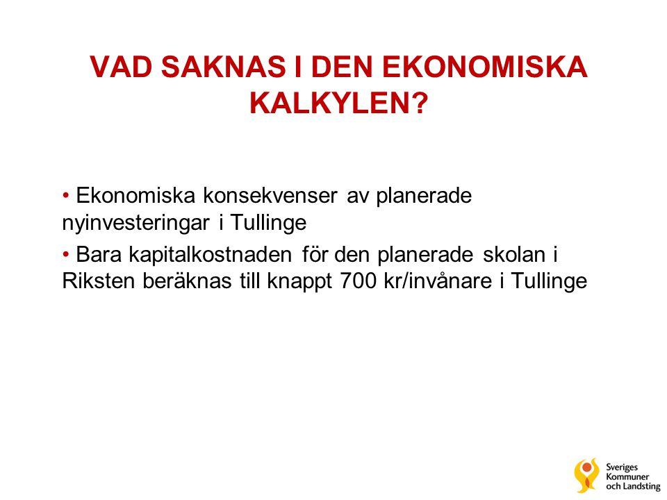 VAD SAKNAS I DEN EKONOMISKA KALKYLEN
