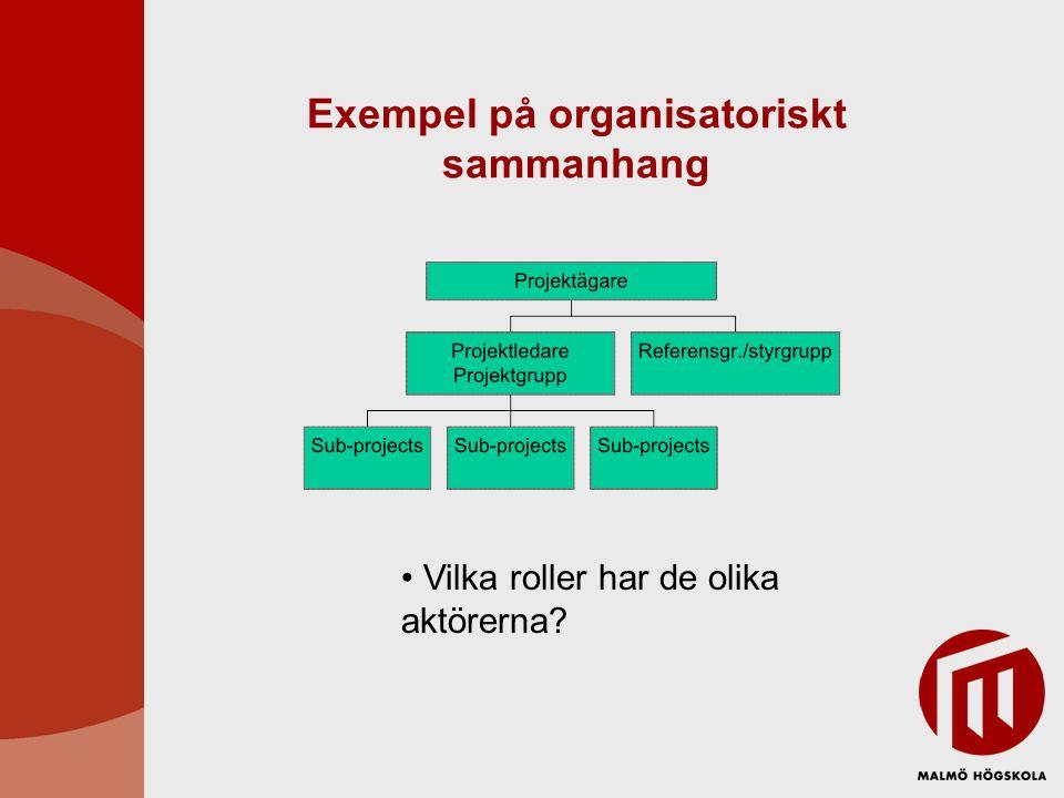 Exempel på organisatoriskt sammanhang