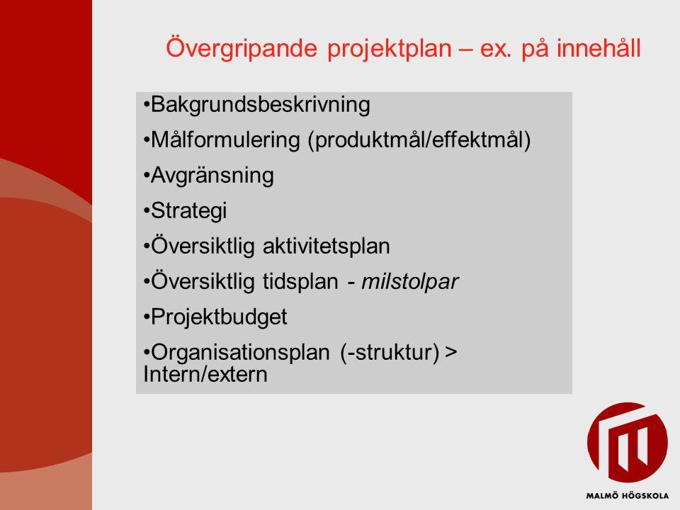 Övergripande projektplan – ex. på innehåll