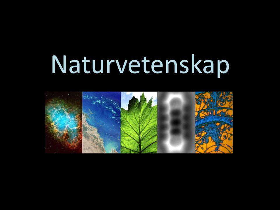 Naturvetenskap