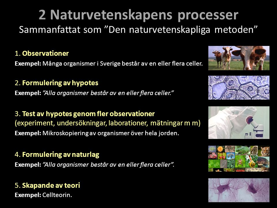 2 Naturvetenskapens processer
