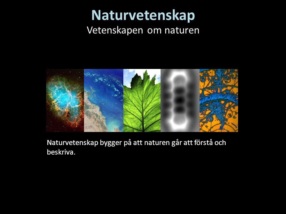 Vetenskapen om naturen