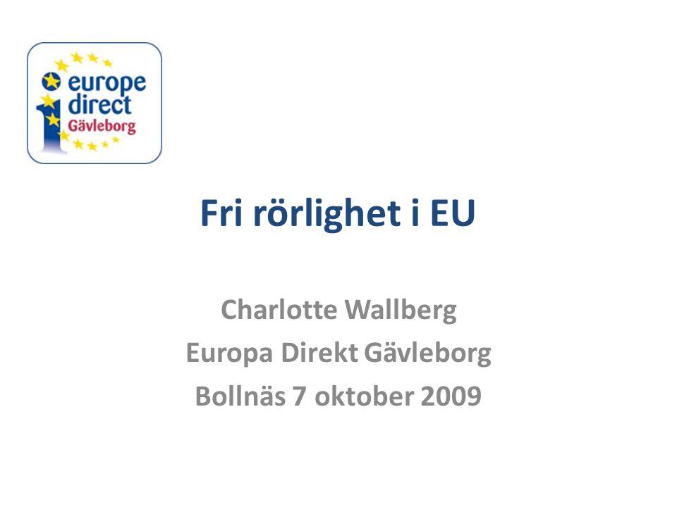 Charlotte Wallberg Europa Direkt Gävleborg Bollnäs 7 oktober 2009