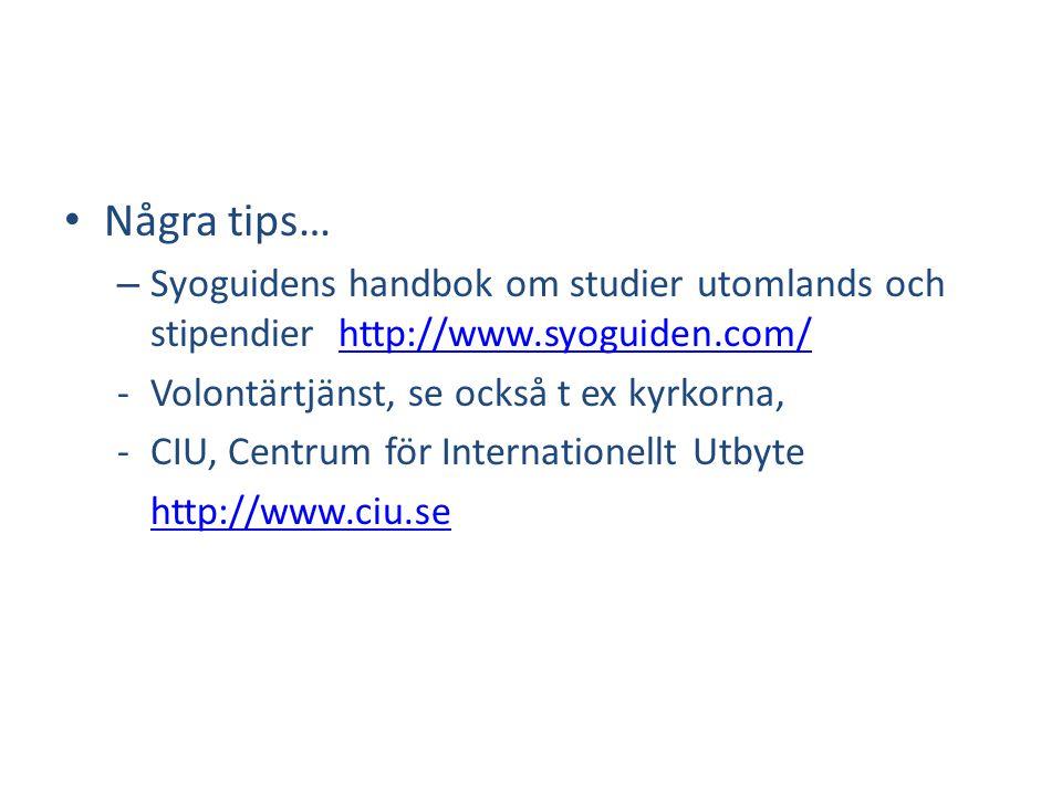 Några tips… Syoguidens handbok om studier utomlands och stipendier http://www.syoguiden.com/ Volontärtjänst, se också t ex kyrkorna,