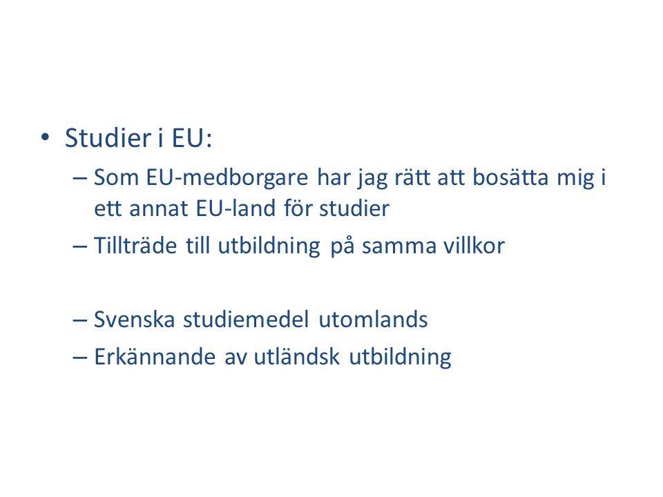 Studier i EU: Som EU-medborgare har jag rätt att bosätta mig i ett annat EU-land för studier. Tillträde till utbildning på samma villkor.