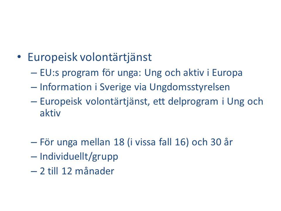 Europeisk volontärtjänst