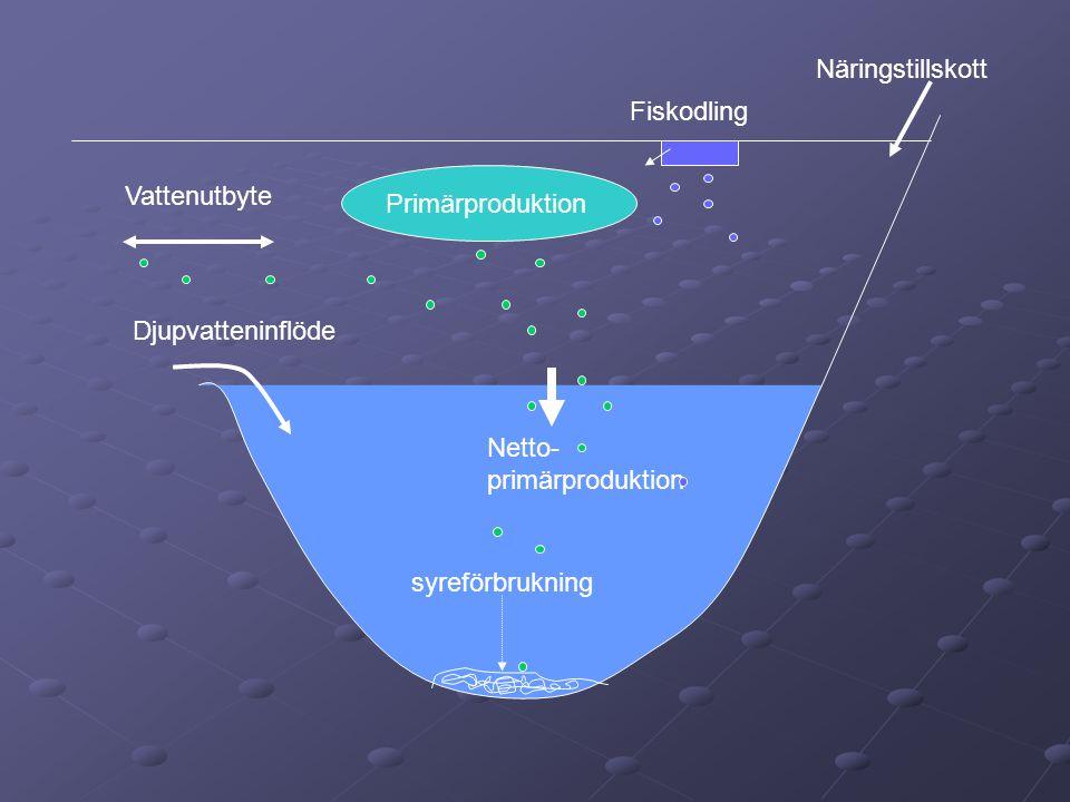 Näringstillskott Fiskodling. Vattenutbyte. Primärproduktion. Djupvatteninflöde. Netto- primärproduktion.
