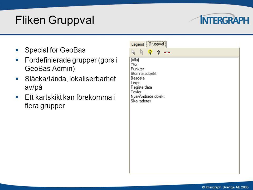 Fliken Gruppval Special för GeoBas