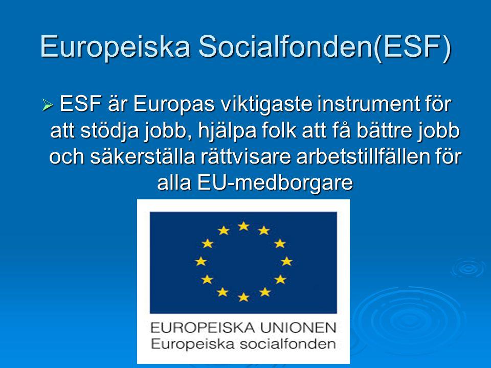 Europeiska Socialfonden(ESF)