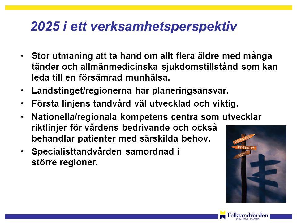 2025 i ett verksamhetsperspektiv